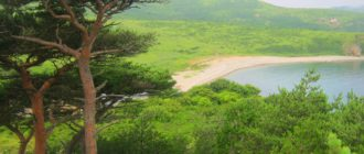 аэротерапия - лечение воздухом и природой