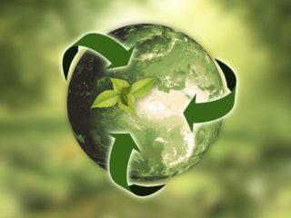 10 способов сделать жизнь экологичнее