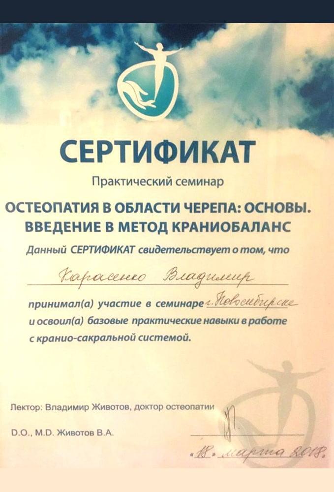 2018-osteopatiya
