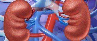 Хронический пиелонефрит - физиотерапевтические методы лечения