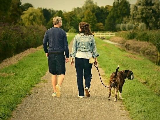 прогулка с другом